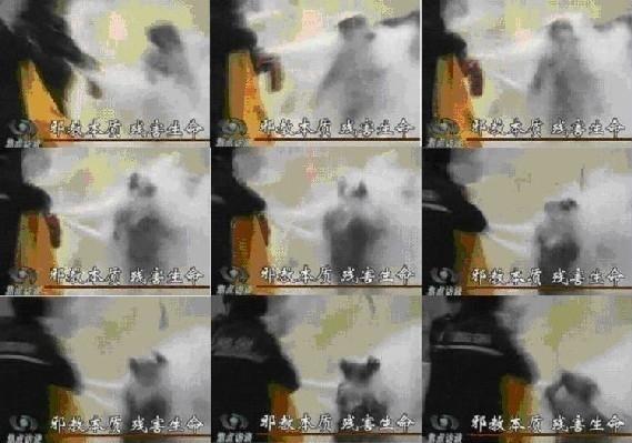 图4 刘春玲被现场杀害的图像