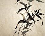 中国流传至今的古籍珍本、名家书画墨迹,大都用宣纸保存。(Fotolia)