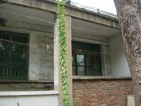 院子里的小屋阳台 (图片来源:明慧网)