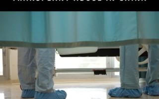橫河:專家如何看中國的器官移植