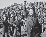 """文革时期养""""忠字猪""""跳""""忠字舞""""等荒唐的献忠心运动。(AFP)"""