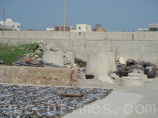墙上的麻雀俟机偷吃鱼的背肉,鱼体无毒但卖相不佳,只好拆肉贱卖。(摄影:林秀霞 / 大纪元)