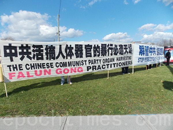 10月21日下午,在加拿大多倫多華人聚集的「太古廣場」綠草坪上,舉行了「聲援1億2千6百萬三退大潮」的真相長城,和講真相勸三退活動。(大紀元)