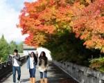 圖:在加拿大的留學生活酸甜苦辣,進入大學讀書不難,拿到畢業證卻不易。 (攝影:景浩/大紀元)