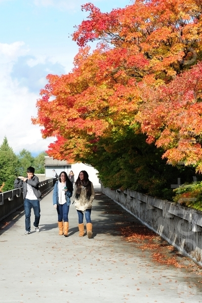 图:在加拿大的留学生活酸甜苦辣,进入大学读书不难,拿到毕业证却不易。 (摄影:景浩/大纪元)