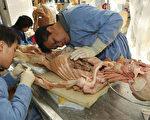 """由德国纳粹后裔冯•哈根斯独家经营的大连哈根斯生物塑化公司""""尸体加工厂"""",由时任大连市长薄熙来亲自审批。(AFP/Getty Images)"""