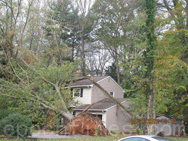 新澤西中部勞倫斯維爾(Lawrenceville)被大樹砸中的房屋(攝影:唐超/大紀元)