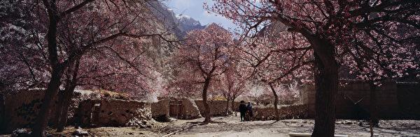 图﹕风光自然类铜奖作品《 帕米尔高原杏花村人家》﹐作者为中国大陆的李银湖。