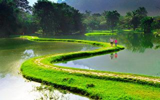 图﹕风光自然类金奖作品《马来西亚太平园早安 》﹐作者为马来西亚的蔡志炎。