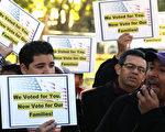 11月8日部分美国拉丁裔移民在白宫前集会,要求奥巴马总统履行大选时的诺言,全面改革美国移民法。(Photo by Mark Wilson/Getty Images)