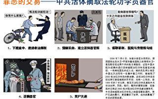 中共活體摘取法輪功學員器官報告(十三)