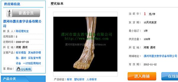 河南省漯河市盟友教学设备有限公司---塑化标本,供货总量:100件,当前价:1元/件[32]