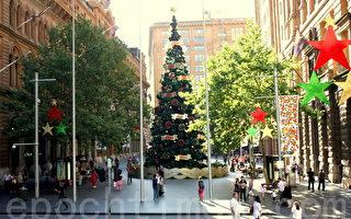 悉尼市中心马丁广场的圣诞树(摄影:何蔚/大纪元)