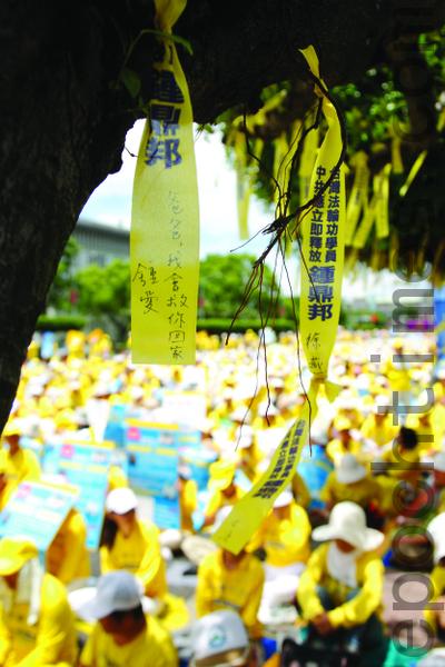 7.23在凱達格蘭大道樹上繫上千條黃絲帶,呼籲總統馬英九緊急營救鍾鼎邦。(攝影:丹尼爾/大紀元)