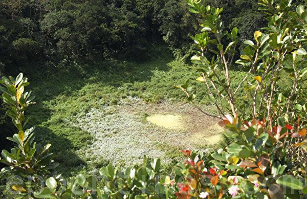 死火山口(Trou aux Cerf)位于模里西斯的中部丘比镇。该火山口保存得相当完好,约85公尺深,直径200公尺。(摄影:戴德蔓/大纪元)