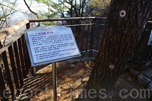 1968年1月21日,北韩敢死队企图袭击青瓦台时,与韩国守军交火。图为当年留下的弹痕。(摄影:全宇/大纪元)