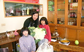 奋起湖一家餐厅展示其所种超过10斤的高冷蔬菜有机又大颗。 (摄影:苏泰安/大纪元)