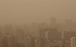 陳凱歌關心北京霧霾 稱明星要教好子女
