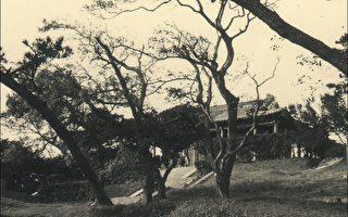 """""""五百完人塚""""(摄于1971年,照片由柯锦良先生提供)"""
