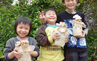 陈慧美与孩子网购菇类菌包种出漂亮的香菇(摄影:徐乃义/大纪元)
