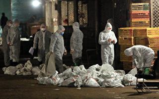 中宣部嚴控H7N9報導 上海近日每天「來兩例」引質疑