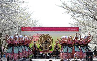 日本玉川大学太鼓歌舞团在表演日本民族舞蹈。(摄影:良克霖/大纪元)
