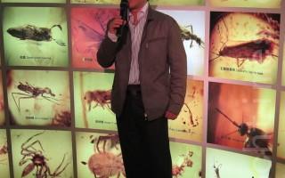 琥珀特展 专访达人黄忆人谈古生物化石收藏