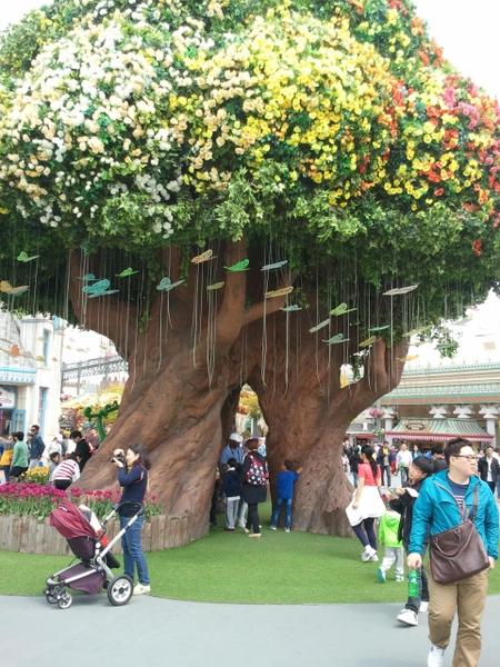 魔法树(图片来源:作者提供)