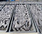 纽约州众议会5月6日投票通过禁止鱼翅交易法案,待州长签署,将从明年7月1日起正式禁止鱼翅销售。(TOSHIFUMI KITAMURA/AFP/Getty Images)