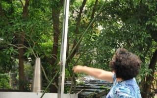 將手中點燃的爆竹,擲入紅竹籠內引爆炮城,不是件容易的事。(西拉雅風管處提供)