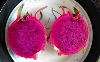 嬌豔欲滴的紅龍果實讓人垂涎三尺。 (莊廷溪提供)