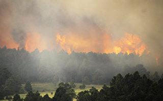 美国科罗拉多泉东北黑森林区野火延烧,野火至少已延烧7,500英亩面积。(Chris Schneider/Getty Images)
