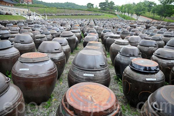 Lohas Park韩屋村前,密密麻麻的大酱缸,形成一道独特的景观 (摄影: 明国/大纪元)