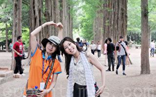 因为韩剧《冬季恋歌》而声名大噪的南怡岛上有多条两旁种满高树的林荫大道 (摄影: 明国/大纪元)
