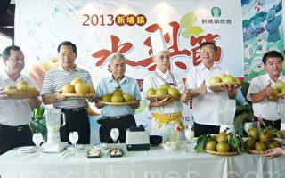 邱镜淳(右2)赖江海(左2)理事长林杰双(左3)农会总干事曾庭熙(左1)展示新埔梨。(摄影:彭瑞兰/大纪元)
