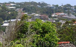 澳洲年輕人被迫退出市場 期待房價下跌