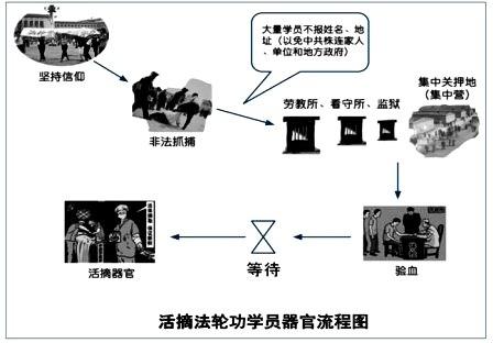 活体强摘法轮功学员器官的流程图(大纪元资料库)