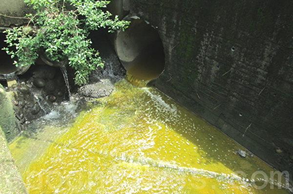 遭到硬铬电镀厂强酸废水污染的溪水(大纪元)