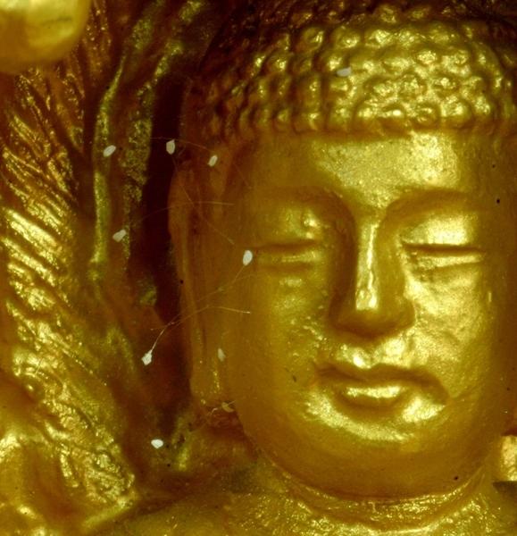 开在佛像脸上的优昙婆罗花。(摄影:匿名/大纪元)