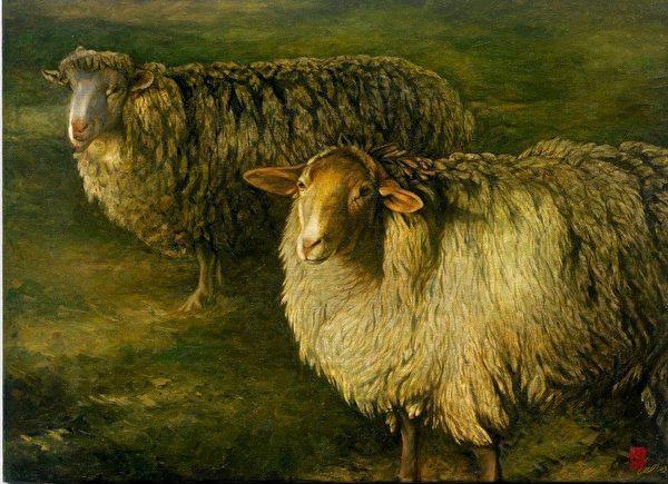 綿羊。(李惠芳提供)