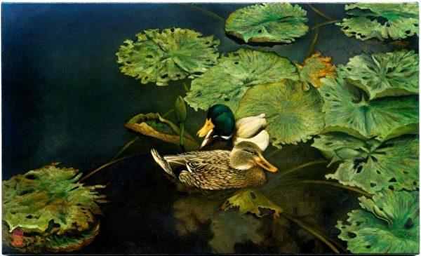 水塘水鴨。(李惠芳提供)