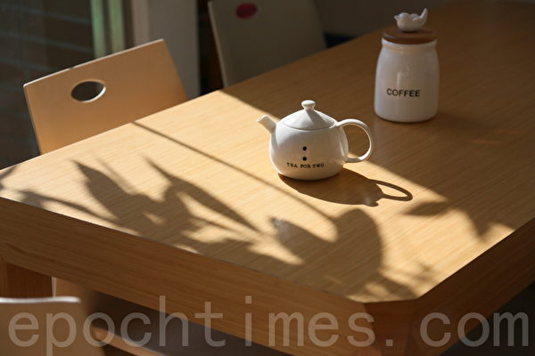 """""""5 Senses café""""阳光和树影透过玻璃窗印在手工木制咖啡桌上,感觉那么温暖。(庄孟翰/大纪元)"""