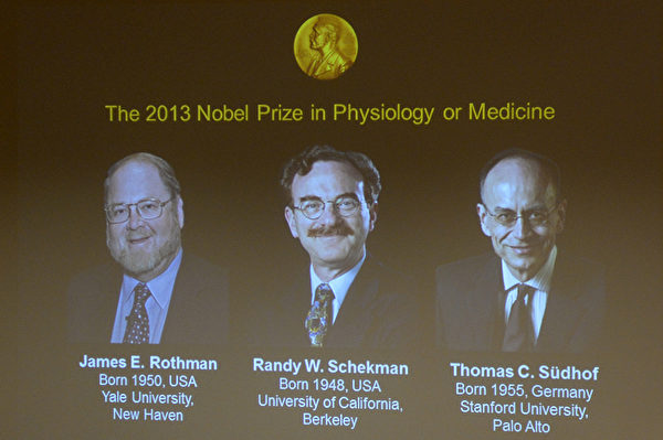 2013年诺贝尔医学与生理学奖由美国科学家罗斯曼、谢克曼(中)与德国科学家苏德霍夫(右)三位科学家获得。苏德霍夫是第98位获得诺贝尔奖的德国人(JONATHAN NACKSTRAND/AFP)