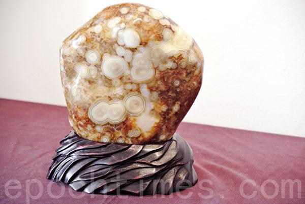 台湾文石具有漂亮的同心圆状,被认为是世界上最漂亮的宝石。(周美晴/大纪元)