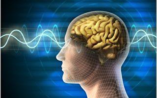 3C產品的近距離光源,會抑制腦內褪黑激素分泌,造成讓入睡困難。(fotolia)