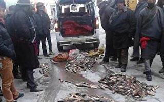 四川省甘孜州康定县塔公乡藏民展开示威请愿。(受访人提供)