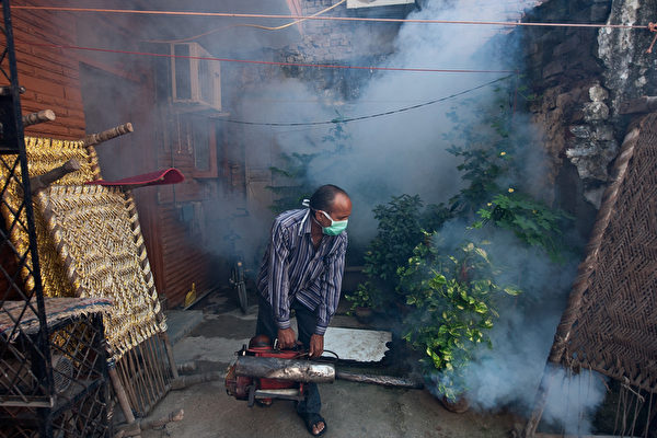 印度疑似隐匿登革热疫情 或创病例新纪录