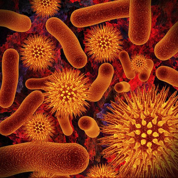 细菌 (摄影:Irochka/Fotolia)