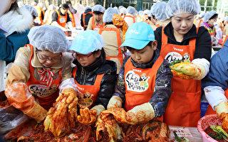 韩国民众正在集体制作泡菜。(全宇/大纪元)