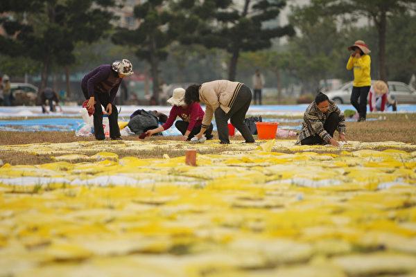 2013台湾学员于台南举行排字,11月22日工作人员在会场进行各项准备活动。(李丹尼/大纪元)